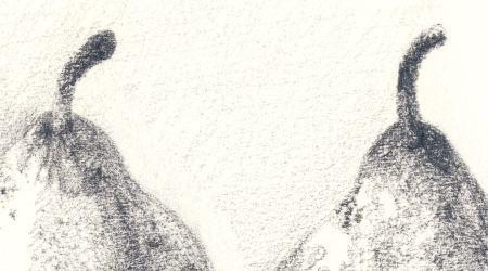 pencilpeardetail-450.jpg