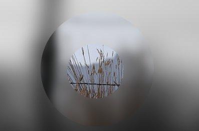 blur-eye.jpg