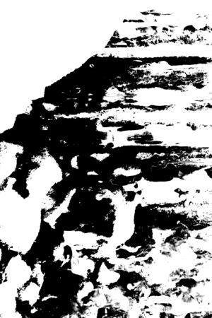 11482-300c.jpg