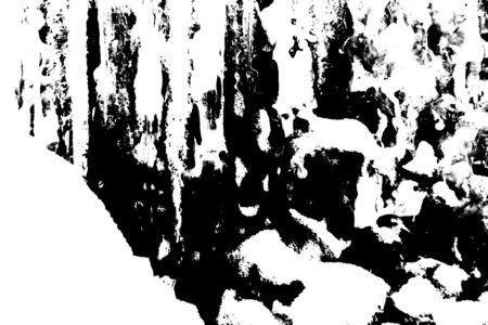 11482-450c.jpg