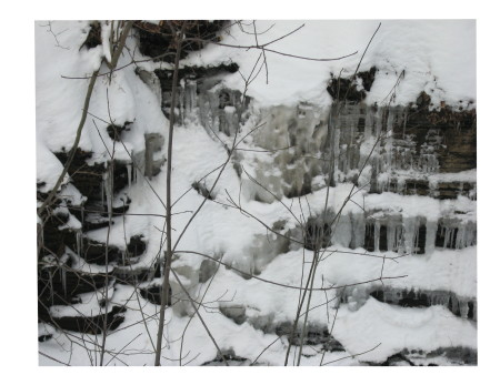 falls-with-twigs-processed.jpg